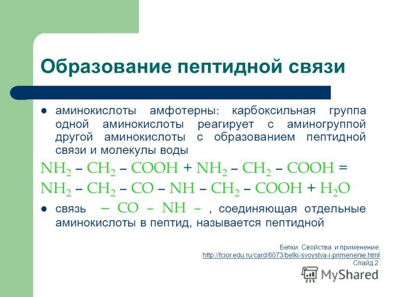Образование пептидной связи аминокислоты амфотерны : карбоксильная группа одной аминокислоты реагирует с аминогруппой другой аминокислоты с образованием пептидной связи и молекулы воды NH 2 – CH 2 – COOH + NH 2 – CH 2 – COOH = NH 2 – CH 2 – CO – NH –