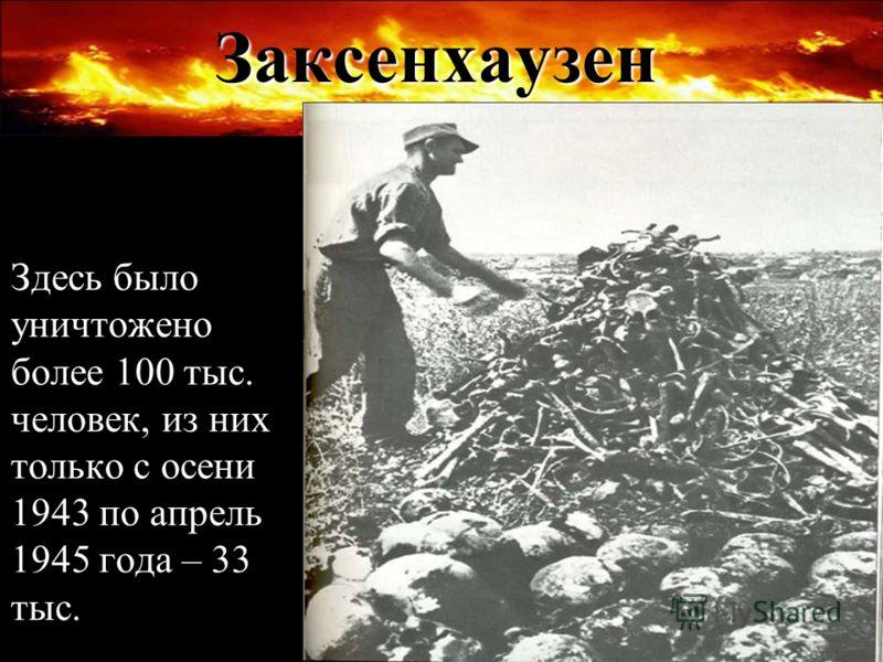 Заксенхаузен Здесь было уничтожено более 100 тыс. человек, из них только с осени 1943 по апрель 1945 года – 33 тыс.