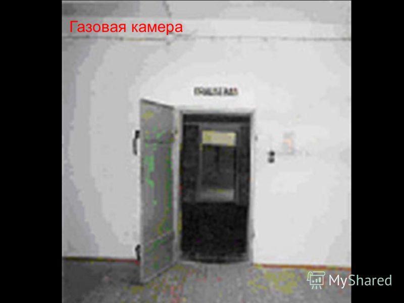Газовая камера