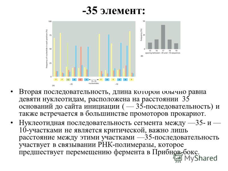 -35 элемент: Вторая последовательность, длина которой обычно равна девяти нуклеотидам, расположена на расстоянии 35 оснований до сайта инициации ( 35-последовательность) и также встречается в большинстве промоторов прокариот. Нуклеотидная последовате