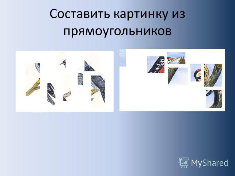 Составить картинку из прямоугольников