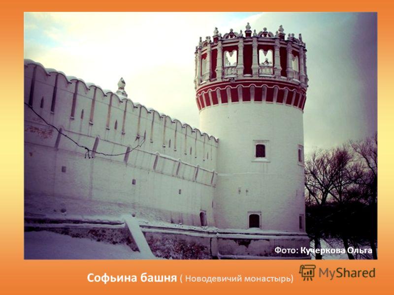 Софьина башня ( Новодевичий монастырь) Фото: Кучеркова Ольга