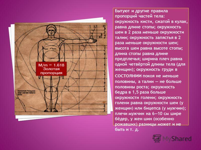 Бытуют и другие правила пропорций частей тела: окружность кисти, сжатой в кулак, равна длине стопы; окружность шеи в 2 раза меньше окружности талии; окружность запястья в 2 раза меньше окружности шеи; высота шеи равна высоте стопы; длина стопы равна