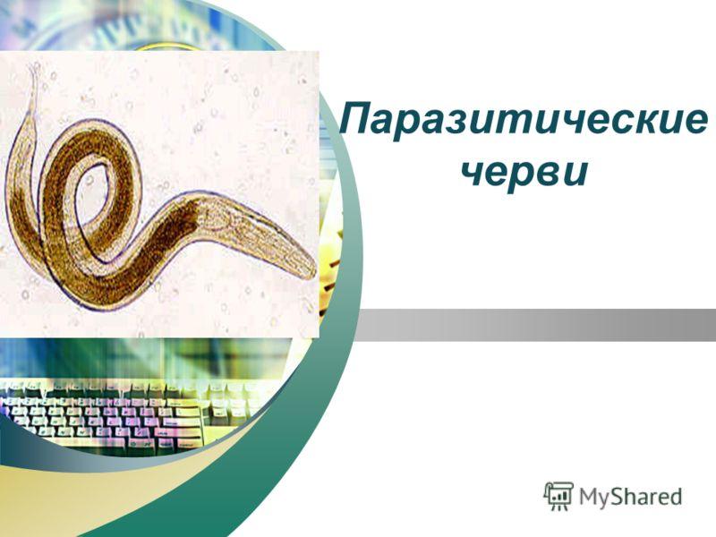 LOGO Add your company slogan Паразитические черви