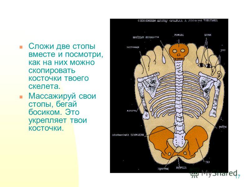 17 Сложи две стопы вместе и посмотри, как на них можно скопировать косточки твоего скелета. Массажируй свои стопы, бегай босиком. Это укрепляет твои косточки.