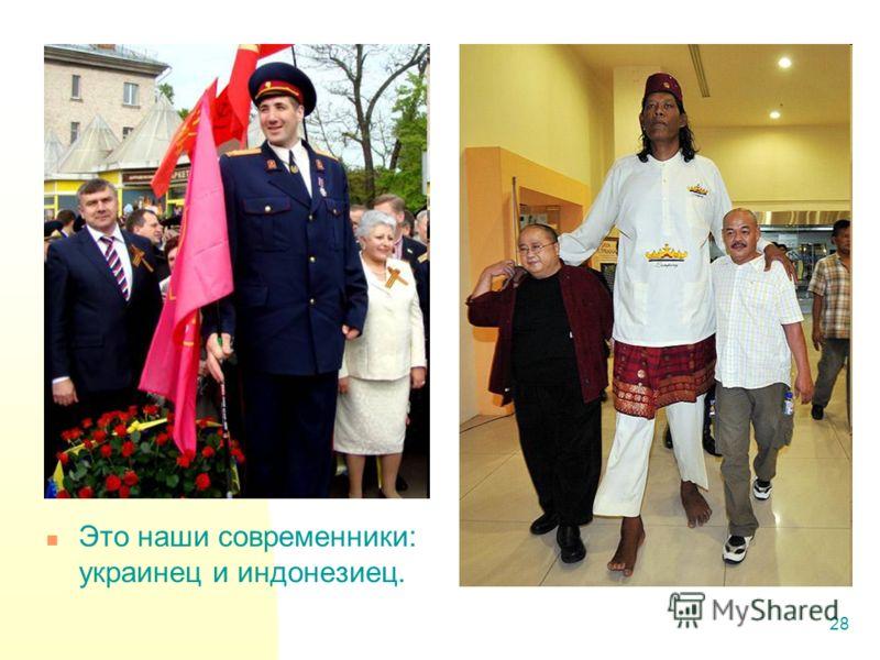 28 Это наши современники: украинец и индонезиец.