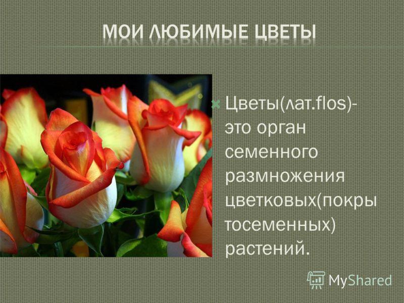 Цветы(лат.flos)- это орган семенного размножения цветковых(покры тосеменных) растений.