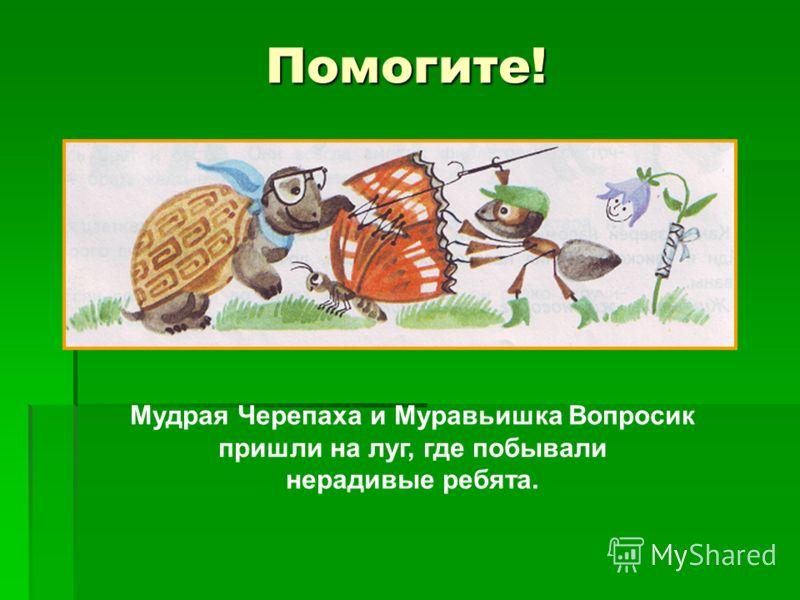 Помогите! Мудрая Черепаха и Муравьишка Вопросик пришли на луг, где побывали нерадивые ребята.