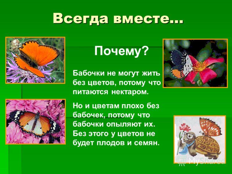 Всегда вместе… Бабочки не могут жить без цветов, потому что питаются нектаром. Но и цветам плохо без бабочек, потому что бабочки опыляют их. Без этого у цветов не будет плодов и семян. Почему?