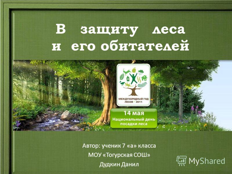 В защиту леса и его обитателей Автор: ученик 7 «а» класса МОУ «Тогурская СОШ» Дудкин Данил