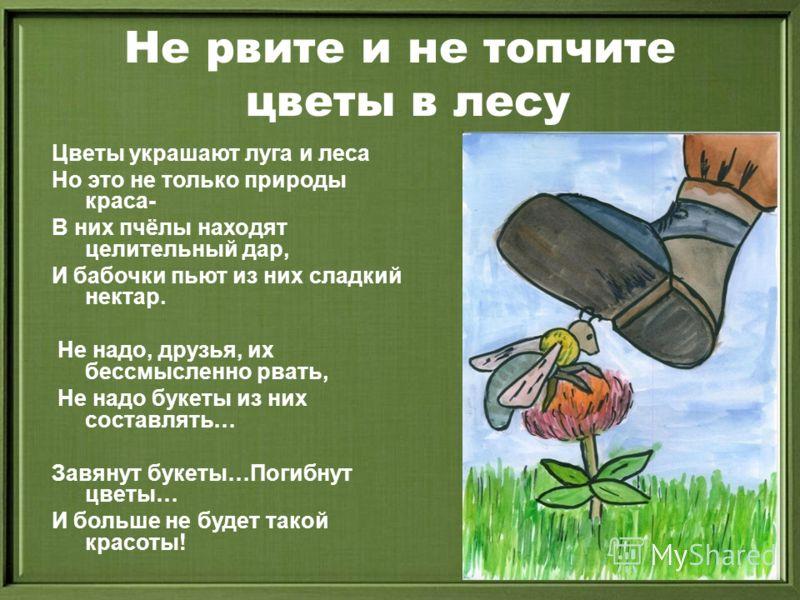 Не рвите и не топчите цветы в лесу Цветы украшают луга и леса Но это не только природы краса- В них пчёлы находят целительный дар, И бабочки пьют из них сладкий нектар. Не надо, друзья, их бессмысленно рвать, Не надо букеты из них составлять… Завянут