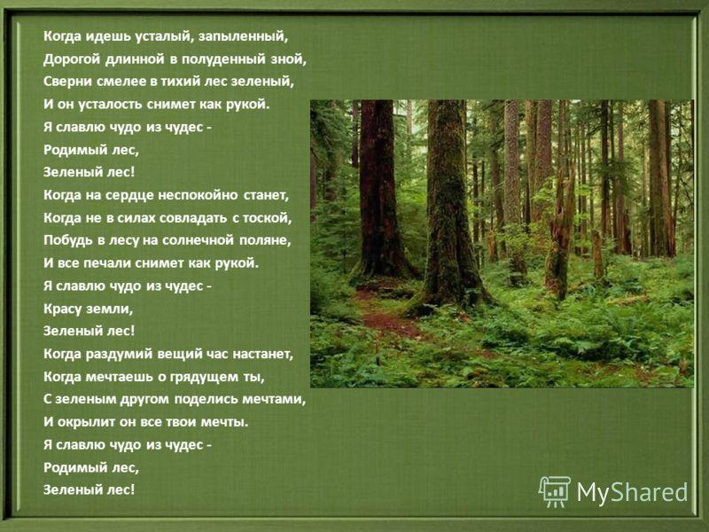 Когда идешь усталый, запыленный, Дорогой длинной в полуденный зной, Сверни смелее в тихий лес зеленый, И он усталость снимет как рукой. Я славлю чудо из чудес - Родимый лес, Зеленый лес! Когда на сердце неспокойно станет, Когда не в силах совладать с