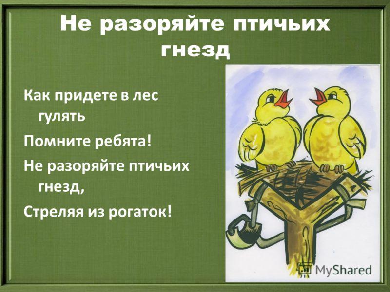 Не разоряйте птичьих гнезд Как придете в лес гулять Помните ребята! Не разоряйте птичьих гнезд, Стреляя из рогаток!