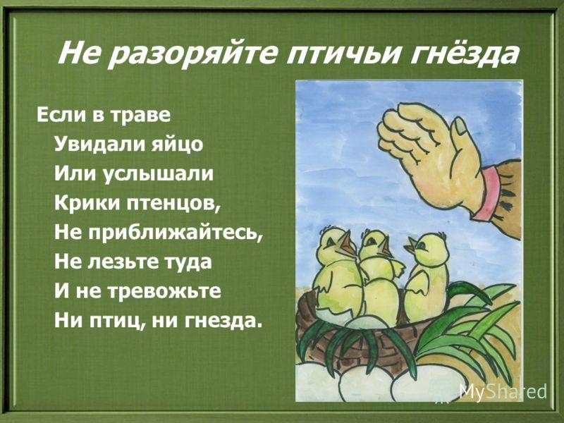 Не разоряйте птичьи гнёзда Если в траве Увидали яйцо Или услышали Крики птенцов, Не приближайтесь, Не лезьте туда И не тревожьте Ни птиц, ни гнезда.
