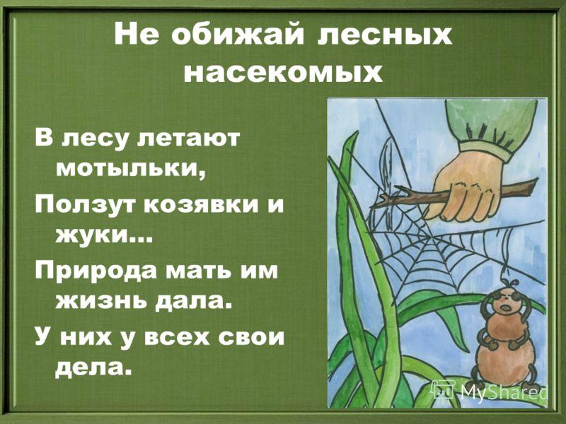 Не обижай лесных насекомых В лесу летают мотыльки, Ползут козявки и жуки… Природа мать им жизнь дала. У них у всех свои дела.