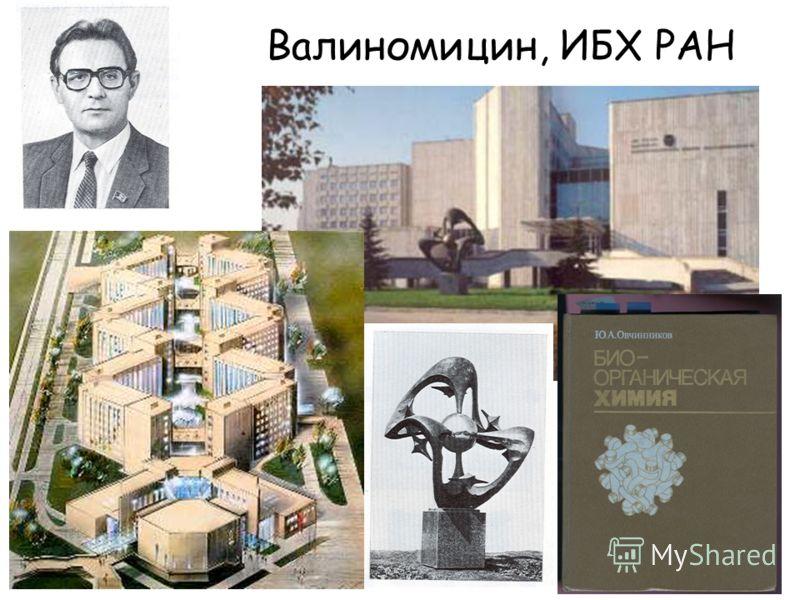 Валиномицин, ИБХ РАН