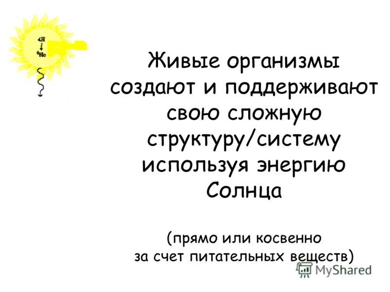 Живые организмы создают и поддерживают свою сложную структуру/систему используя энергию Солнца (прямо или косвенно за счет питательных веществ)