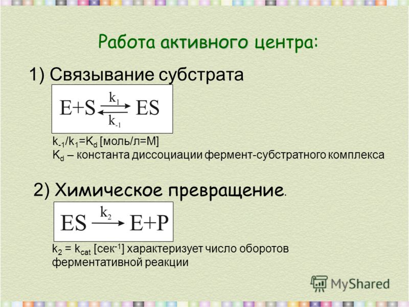 1) Связывание субстрата 2) Х имическое превращение. активного Работа активного центра: k -1 /k 1 =K d [моль/л=М] K d – константа диссоциации фермент-субстратного комплекса k 2 = k cat [cек -1 ] характеризует число оборотов ферментативной реакции