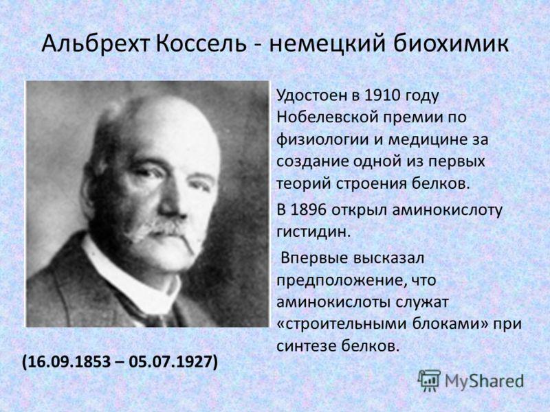 Альбрехт Коссель - немецкий биохимик (16.09.1853 – 05.07.1927) Удостоен в 1910 году Нобелевской премии по физиологии и медицине за создание одной из первых теорий строения белков. В 1896 открыл аминокислоту гистидин. Впервые высказал предположение, ч