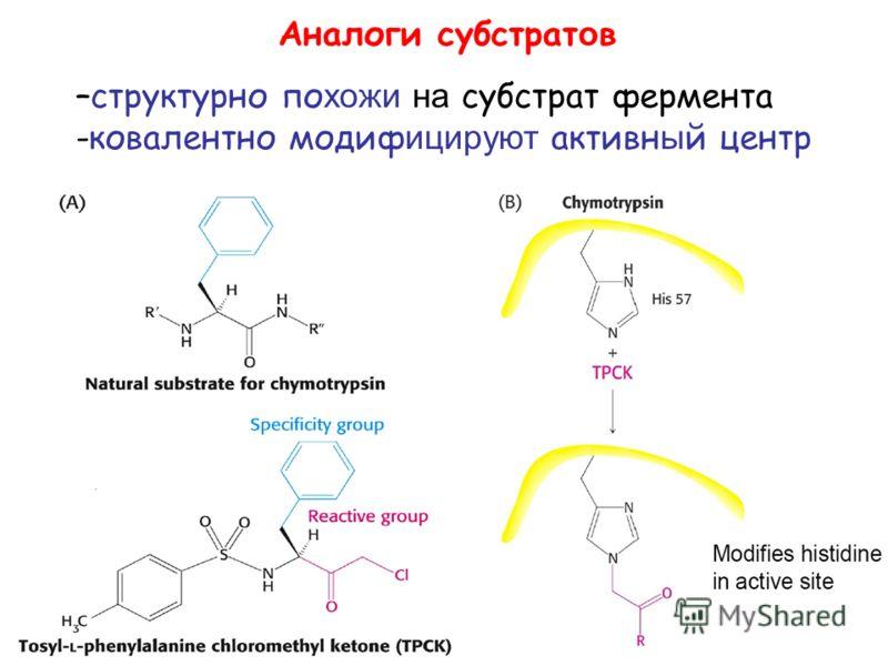 Аналоги субстрат о в –структурно по хожи на субстрат фермента -ковалентно модиф ицируют активн ы й центр
