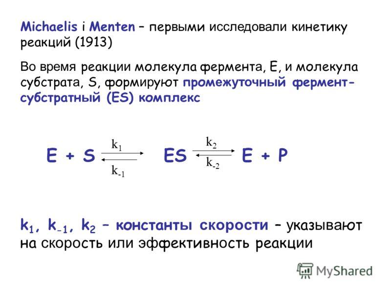 Michaelis і Menten – пер вы ми исследовали к и нетику реакц и й (1913) Во время реакц ии молекула фермент а, E, и молекула субстрат а, S, форм ир уют пром е ж уточ н ы й фермент- субстратн ы й (ES) комплекс k 1, k -1, k 2 – констант ы скорости – у ка