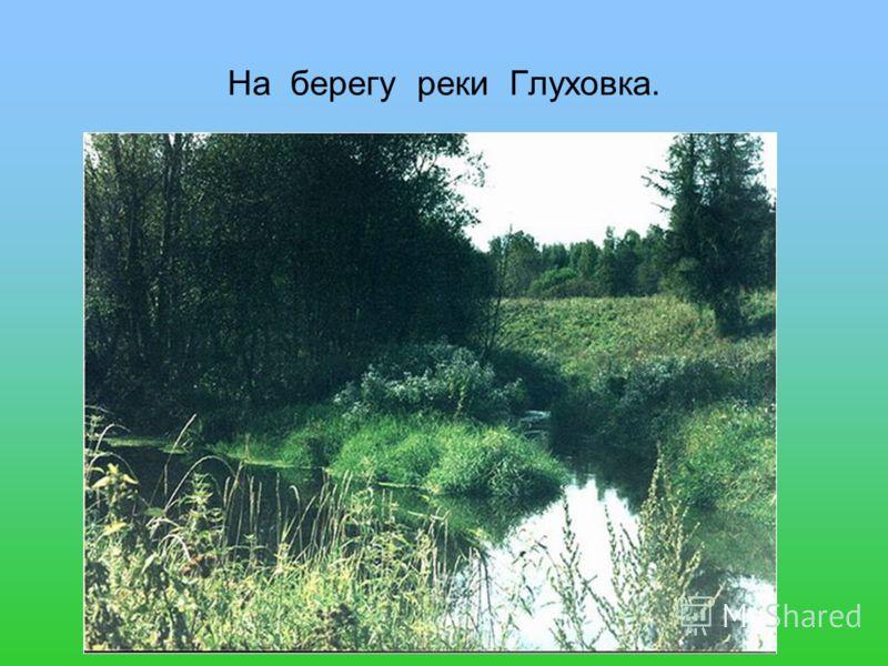 На берегу реки Глуховка.