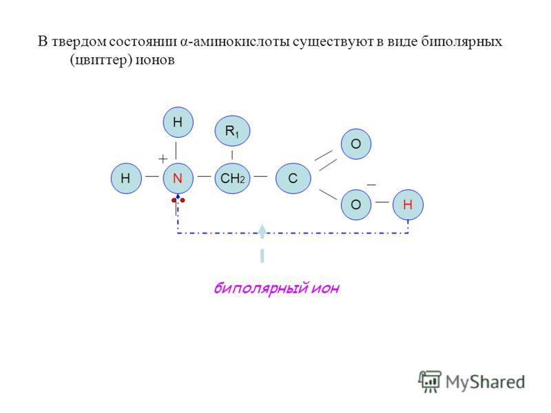 В твердом состоянии α-аминокислоты существуют в виде биполярных (цвиттер) ионов NСН 2 C O O H H H биполярный ион R1R1