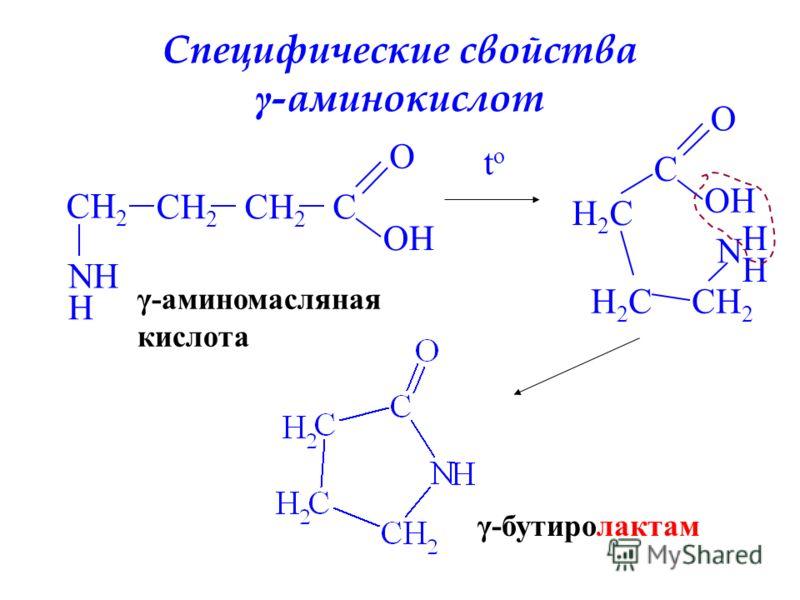 Специфические свойства γ -аминокислот CH 2 C O OH NH H γ-аминомасляная кислота toto C O OH H2CH2C H2CH2CCH 2 N H H γ-бутиролактам