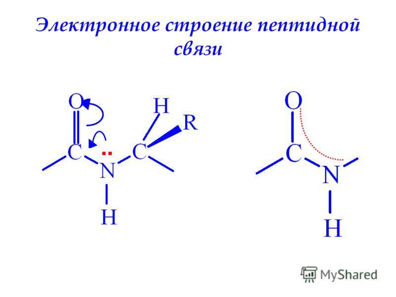 Электронное строение пептидной связи