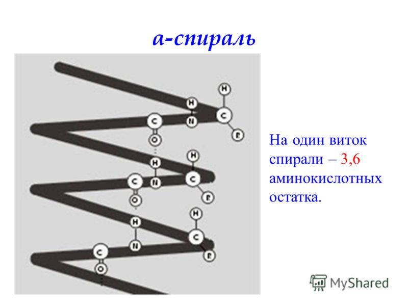На один виток спирали – 3,6 аминокислотных остатка. α-спираль