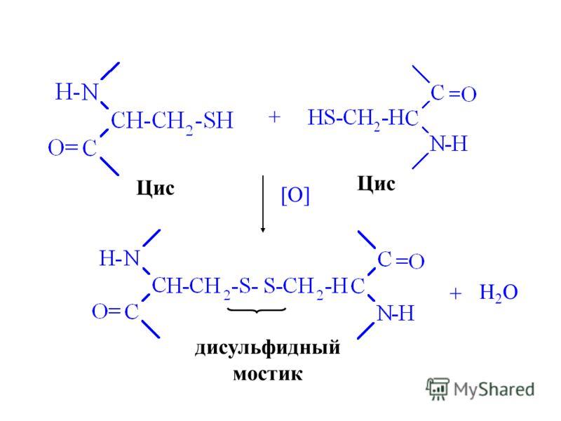 Цис + [O] + H2OH2O дисульфидный мостик