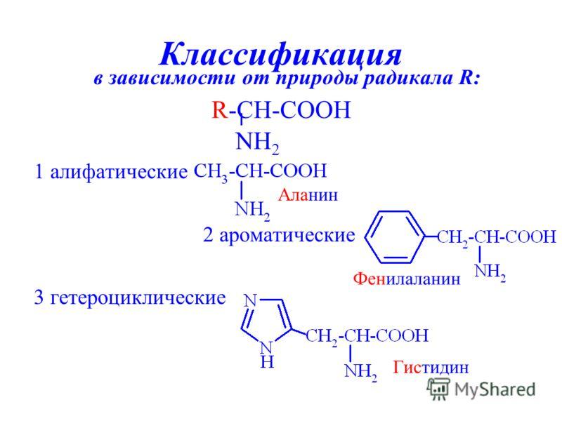 Классификация в зависимости от природы радикала R: 1 алифатические 2 ароматические 3 гетероциклические Аланин Фенилаланин Гистидин R-CH-COOH NH 2