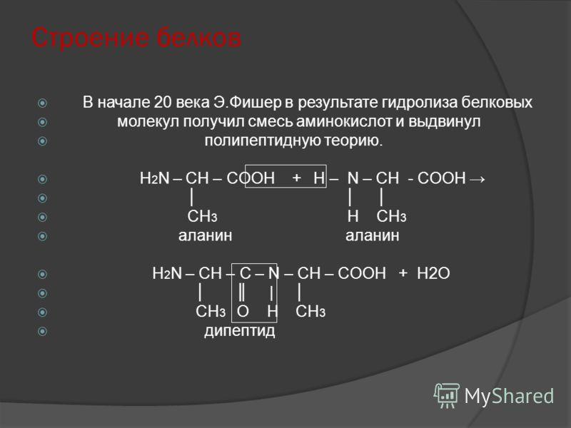 Строение белков В начале 20 века Э.Фишер в результате гидролиза белковых молекул получил смесь аминокислот и выдвинул полипептидную теорию. H 2 N – CH – COОН + Н – N – CH - COOH CH 3 H CH 3 аланин аланин H 2 N – CH – C – N – CH – COOH + Н2О | CH 3 О