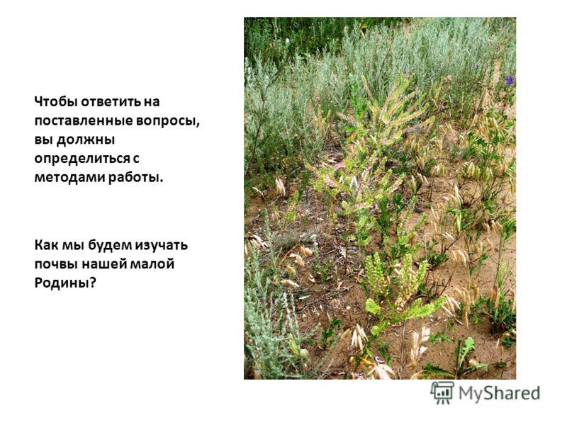 Чтобы ответить на поставленные вопросы, вы должны определиться с методами работы. Как мы будем изучать почвы нашей малой Родины?