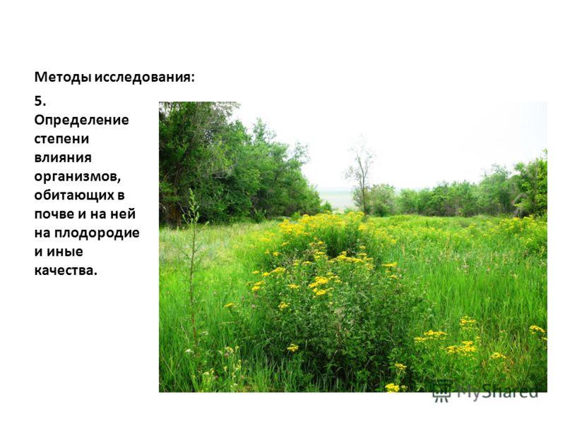 Методы исследования: 5. Определение степени влияния организмов, обитающих в почве и на ней на плодородие и иные качества.
