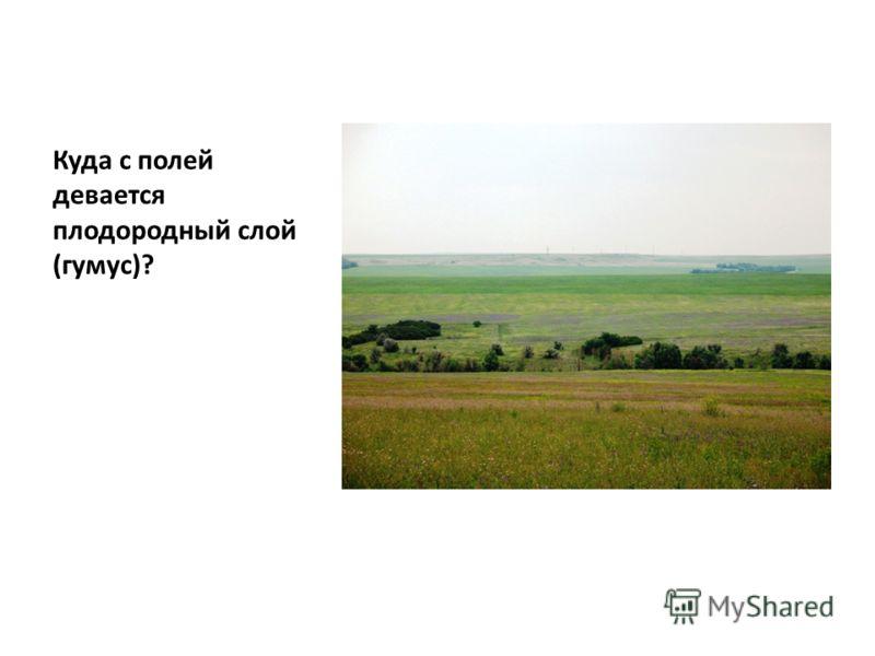 Куда с полей девается плодородный слой (гумус)?