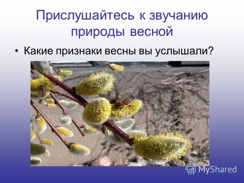Прислушайтесь к звучанию природы весной Какие признаки весны вы услышали?