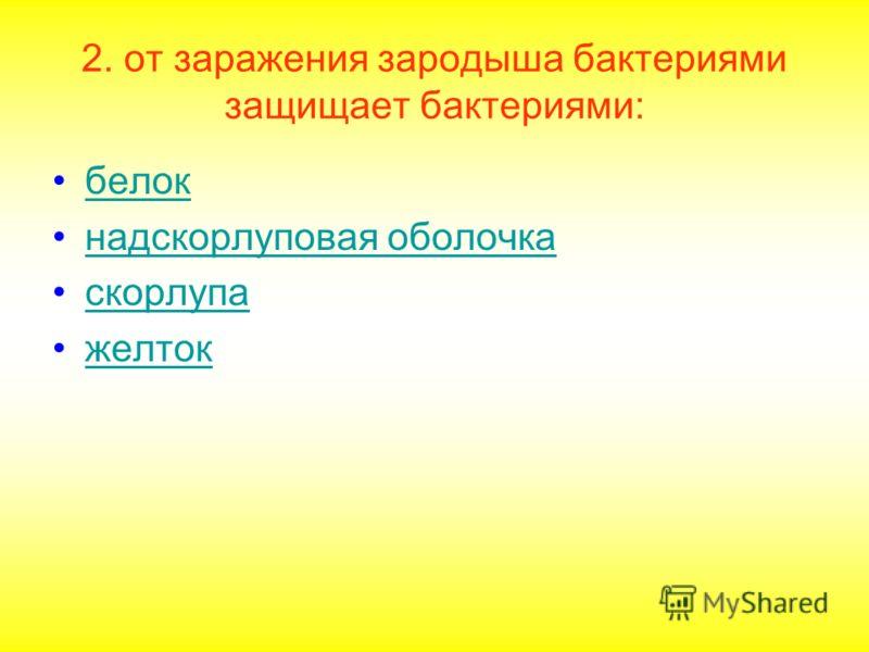 2. от заражения зародыша бактериями защищает бактериями: белок надскорлуповая оболочка скорлупа желток