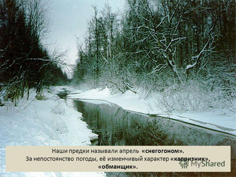Наши предки называли апрель «снегогоном». За непостоянство погоды, её изменчивый характер «капризник», «обманщик».