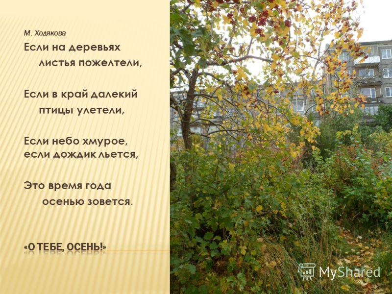 М. Ходякова Если на деревьях листья пожелтели, Если в край далекий птицы улетели, Если небо хмурое, если дождик льется, Это время года осенью зовется.