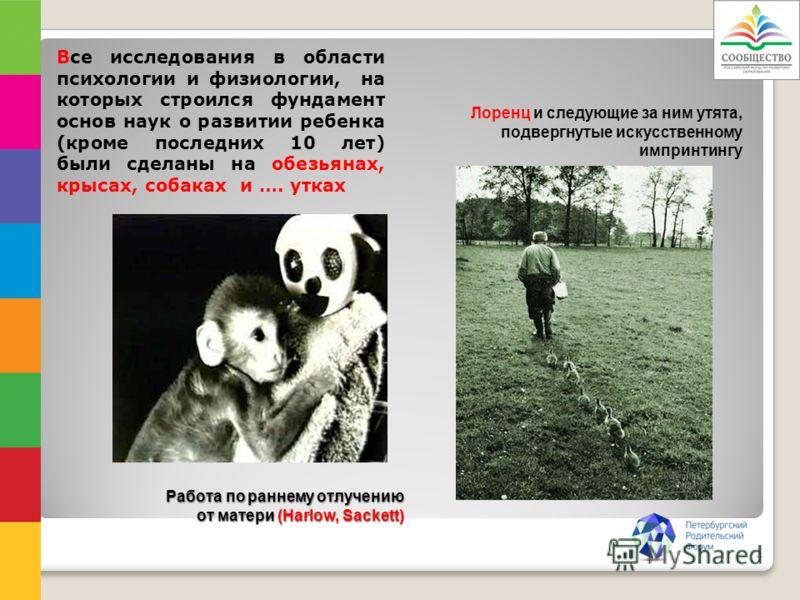 Работа по раннему отлучению от матери (Harlow, Sackett) Все исследования в области психологии и физиологии, на которых строился фундамент основ наук о развитии ребенка (кроме последних 10 лет) были сделаны на обезьянах, крысах, собаках и …. утках Лор
