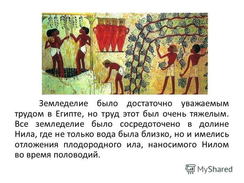 Земледелие было достаточно уважаемым трудом в Египте, но труд этот был очень тяжелым. Все земледелие было сосредоточено в долине Нила, где не только вода была близко, но и имелись отложения плодородного ила, наносимого Нилом во время половодий.