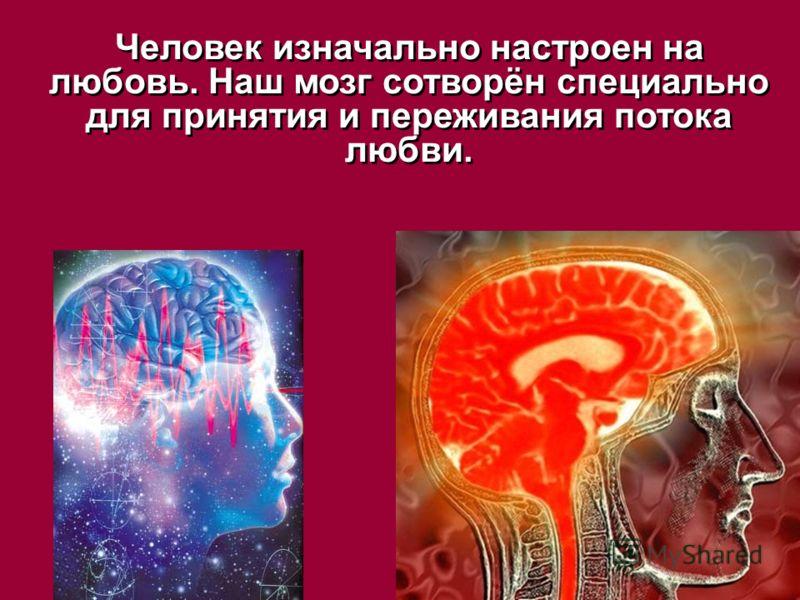 Человек изначально настроен на любовь. Наш мозг сотворён специально для принятия и переживания потока любви.