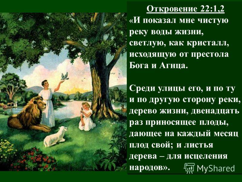 Откровение 22:1,2 « И показал мне чистую реку воды жизни, светлую, как кристалл, исходящую от престола Бога и Агнца. Среди улицы его, и по ту и по другую сторону реки, дерево жизни, двенадцать раз приносящее плоды, дающее на каждый месяц плод свой; и
