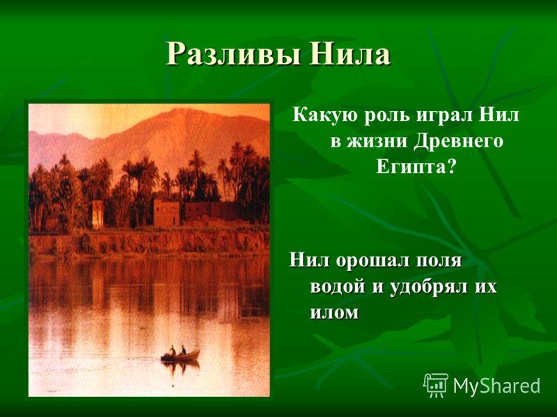 Разливы Нила Какую роль играл Нил в жизни Древнего Египта? Нил орошал поля водой и удобрял их илом