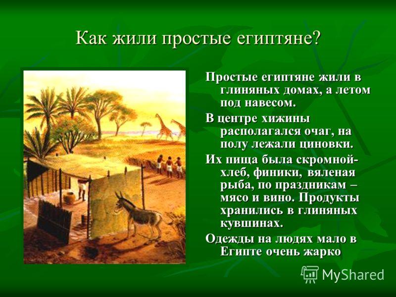 Как жили простые египтяне? Простые египтяне жили в глиняных домах, а летом под навесом. В центре хижины располагался очаг, на полу лежали циновки. Их пища была скромной- хлеб, финики, вяленая рыба, по праздникам – мясо и вино. Продукты хранились в гл