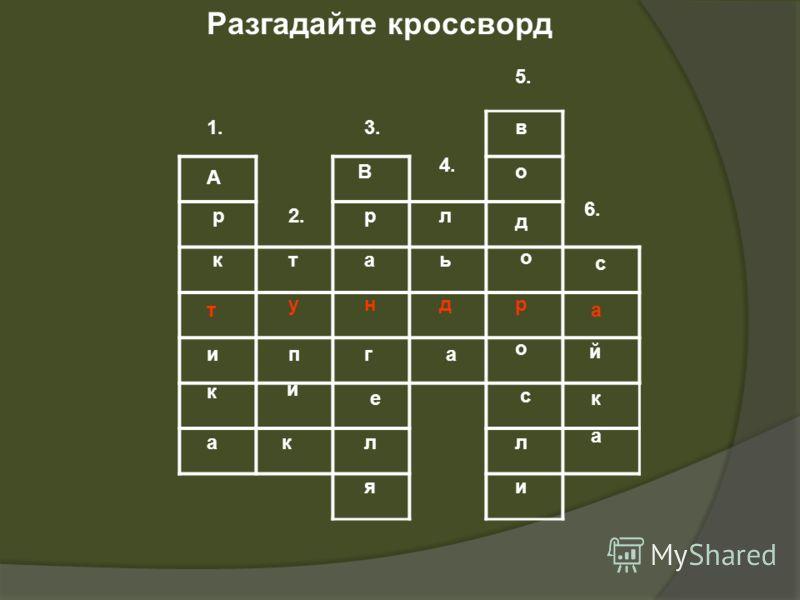 Разгадайте кроссворд ат у ндр А р к и к а т п и к В р а г е л я л ь а в о д о о л с и с й к а 1. 2. 3. 4. 5. 6.