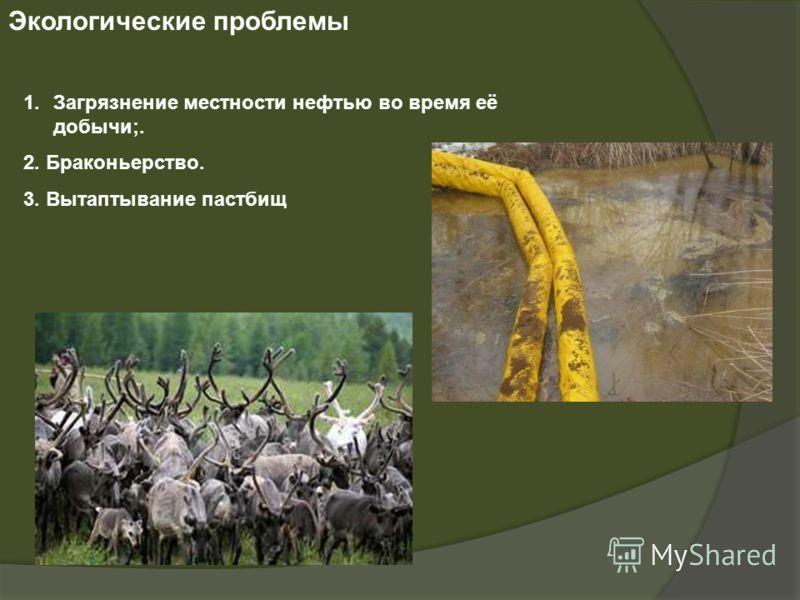 Экологические проблемы 1.Загрязнение местности нефтью во время её добычи;. 2. Браконьерство. 3. Вытаптывание пастбищ