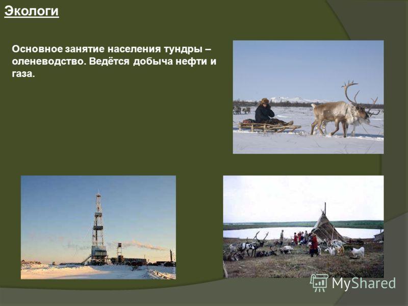 Экологи Основное занятие населения тундры – оленеводство. Ведётся добыча нефти и газа.
