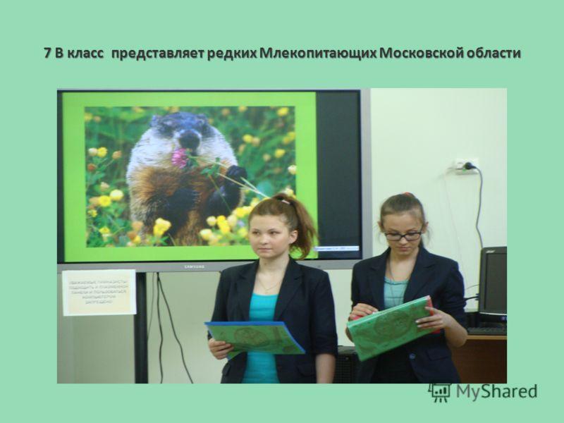 7 В класс представляет редких Млекопитающих Московской области